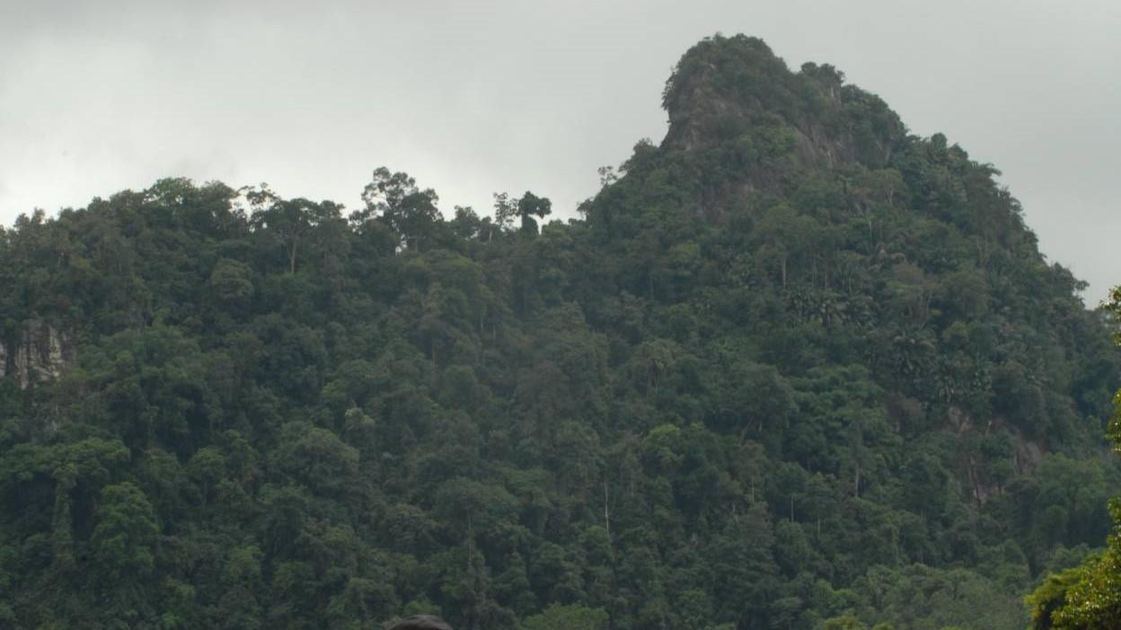 mahakam river tour destination cloud rain forest borneo kalimantan tour guide trip